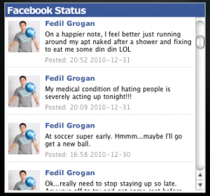 Image of Facebook Status on Personal Blog