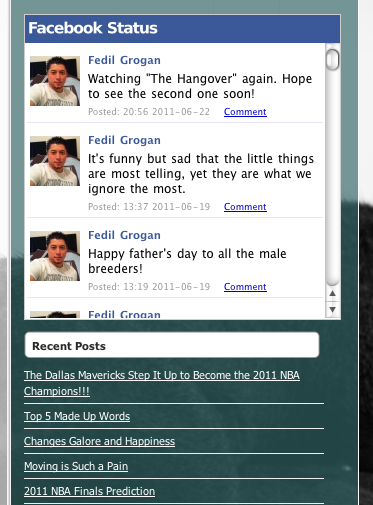 An example of someone's Facebook Wall Feed on a WordPress blog